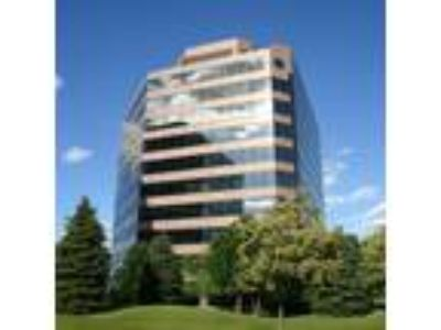 Schaumburg, Full floor with window offices, conference room