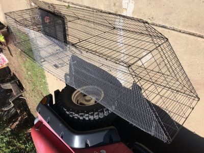 Dog or puppy kennel with run