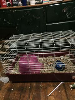 2 Guinea pig/rabbit/ small animal cages