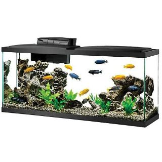 Wanted: My Items for aquariums or accessories.