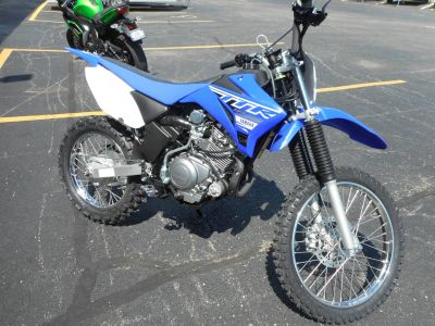2019 Yamaha TT-R125LE Motorcycle Off Road Belvidere, IL