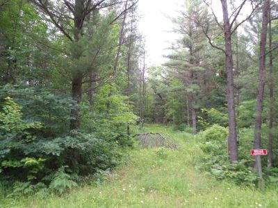 Clark County 5.87 Wooded acres on ATV trails; excellent hunting