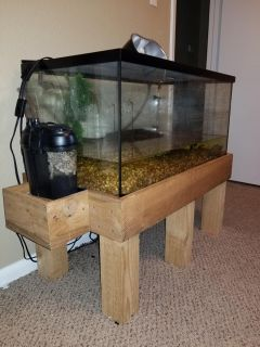 Reptile Tank & Stand