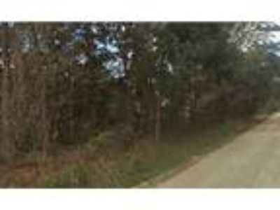 Land for Sale by owner in Ocklawaha, FL