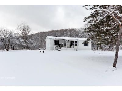 3 Bed 2 Bath Foreclosure Property in Middleburgh, NY 12122 - Stone Store Rd