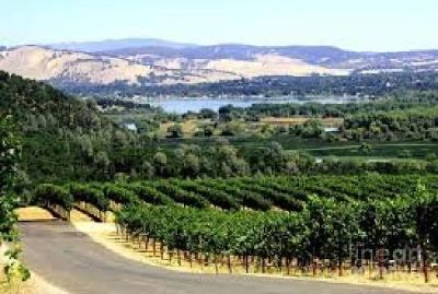 California Wine Country Tours