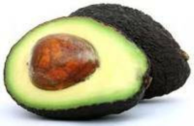 Avocados trees Rauls Tropical Place call at (956) 292-8442