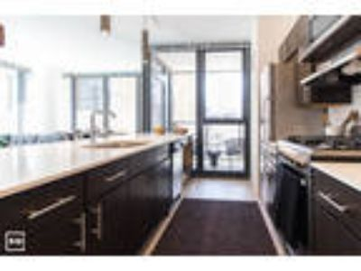 RIVER NORTH: Modern Kitchen, Laundry in Unit, Balcony