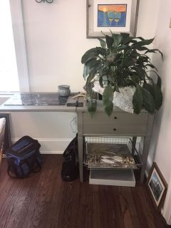 Sewing table converted to planter