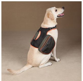 Brand New Dog BackPack