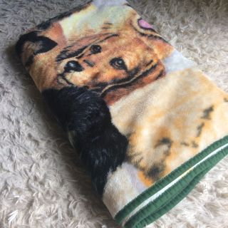 Twin puppy throw