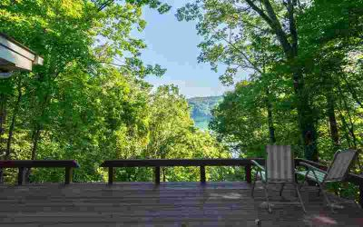 206 Cindy Lane Ellijay Two BR, You can't get much closer to