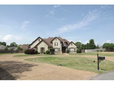 4 Bed Preforeclosure Property in Olive Branch, MS 38654 - Wedgewood Dr
