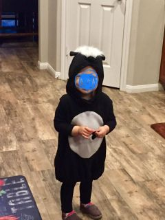 Pottery Barn skunk costume 24 month