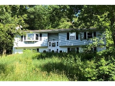 3 Bed 1 Bath Foreclosure Property in Hopewell Junction, NY 12533 - Memory Ln
