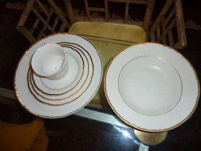 Fine Bohemian China Service for 6 - 6 Piece Place Setting