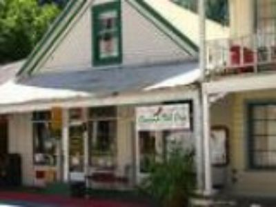 Rare Riverfront Commercial in Downieville
