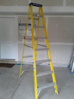 8' Louisville Ladder