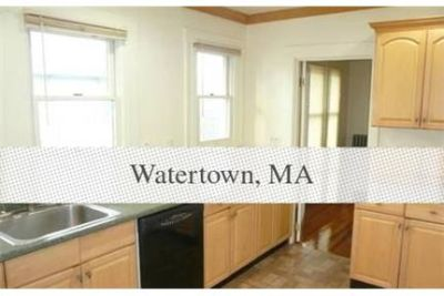 Gorgeous 4 bedroom apartment near Waverley and. Offstreet parking!