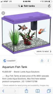 Looking for Fish Tanks , fish tank waver, and fish tank decor let me know if you have any