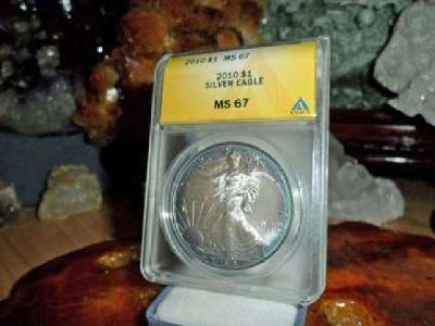 Gorgeous American Silver Eagle Dollar {2010-P ANACS MS 67}