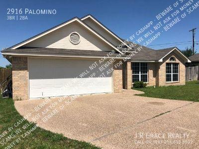 Single-family home Rental - 2916 Palomino