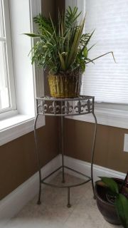 Plant stand with live plant