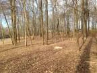 0.33 Acres For Sale In Savannah, TN
