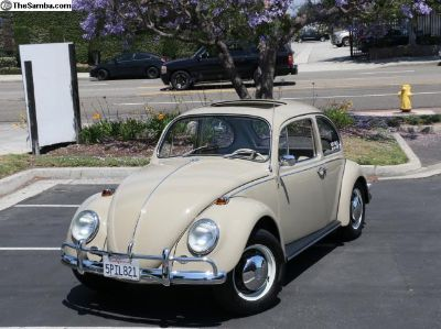 1967 VW Bug - Euro Bug! New Paint, Sunroof!