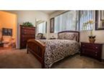 Acclaim Apartment Homes - 2x2 L Large