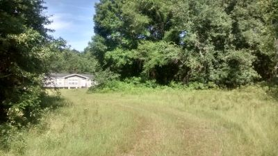 80 ACRES GREAT INVESTMENT EXCELLENT LOCATION JONESVILLE AREA 5 MINUTES TO SHOPPING .GAINESVILLE FL