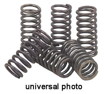Buy 2006-2009 zzzz XVS 650 V-Star Silverado CLUTCH SPRING KIT CSK91 motorcycle in Ellington, Connecticut, US, for US $9.95