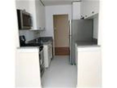 No Fee - One BR. in Forest Hills -