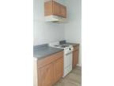 One BR One BA In New Haven CT 06513