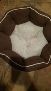 Gently Used Small Dog / Cat Bed