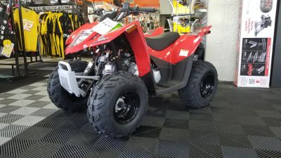 2018 Textron Off Road Alterra DVX 90 Kids ATVs Jesup, GA