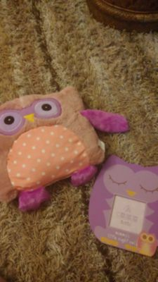 Owl pillow and picture frame