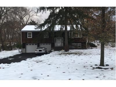 4 Bed 2.5 Bath Preforeclosure Property in Blauvelt, NY 10913 - Burrows Ln