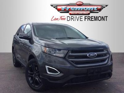 2018 Ford Edge (Magnetic Metallic)