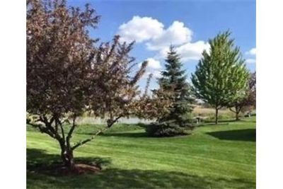 House for rent in Plainfield.