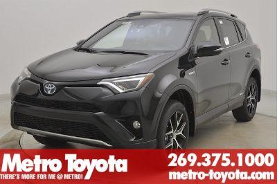 2018 Toyota RAV4 SE (Black Sand Pear)