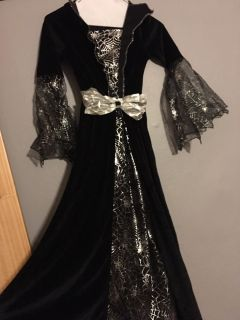 Halloween costume with veil excellent condition child s medium