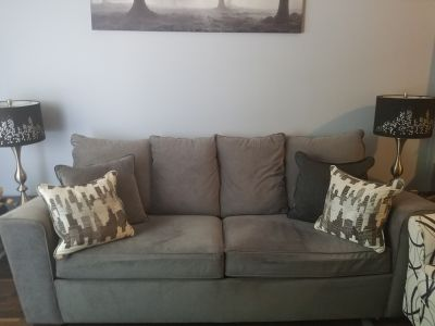 Gray Loveseat sofabed