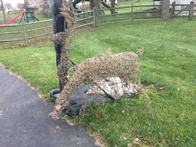 Two Holiday Deer Lawn Decorations
