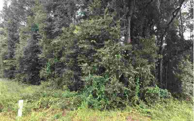 Tbd NW Cr152 Jennings, Nice corner wooded lot on paved road