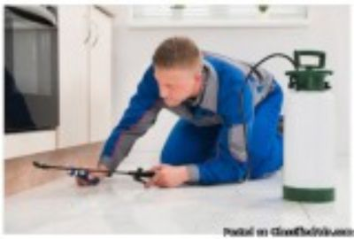 Quality Pest Control Services in McAllen