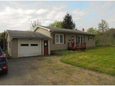 3 Bed 1 Bath Foreclosure Property in Troy, PA 16947 - W Branch Ln