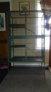 Double ferret nation cage