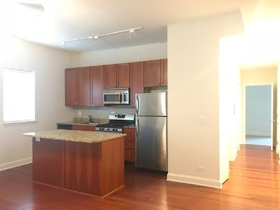Gorgeous 2 bed / 2 bath in Lincoln Park with Gas Fire Place, Wine Fridge, BIG Master Bedroom, Central Heat + Air!