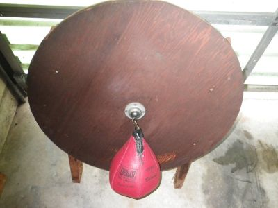 speed bag and backstop